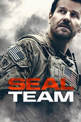 海豹突击队 第二季的海报