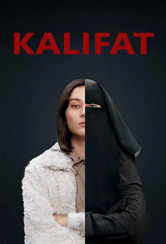 无卡莉法的海报
