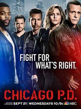 芝加哥警署 第四季的海报