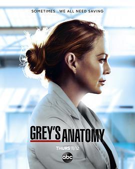 实习医生格蕾 第十七季的海报