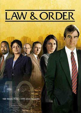 法律与秩序 第十季的海报