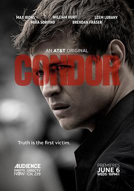《秃鹰 第二季》全集/Condor Season 2在线观看
