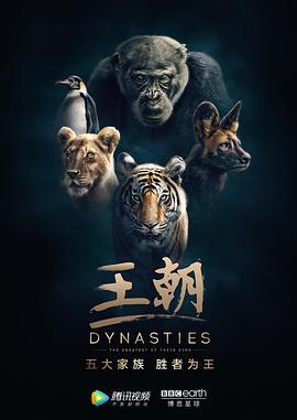王朝的海报
