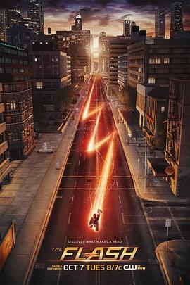 闪电侠 第一季的海报