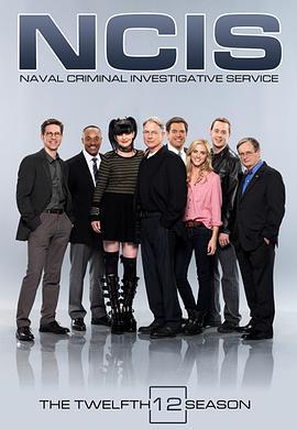 海军罪案调查处 第十二季的海报