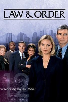 法律与秩序 第十二季的海报