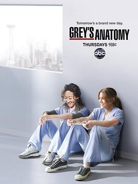 实习医生格蕾 第八季的海报