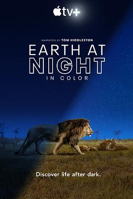 夜色中的地球的海报