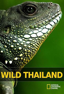 野性泰国的海报