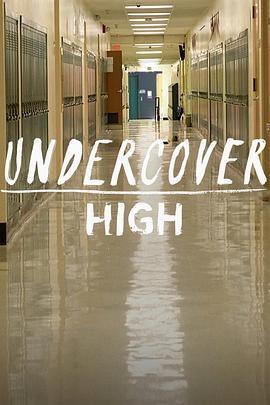 高中卧底的海报