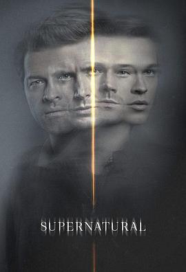 邪恶力量 第十五季的海报