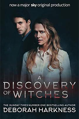 发现女巫的海报