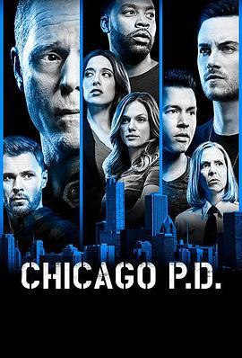 芝加哥警署 第六季的海报