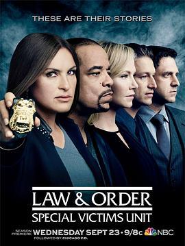 法律与秩序:特殊受害者 第十七季的海报