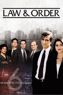 法律与秩序 第六季的海报