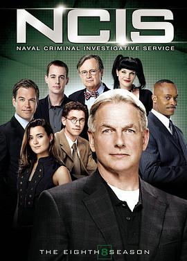 海军罪案调查处 第八季的海报