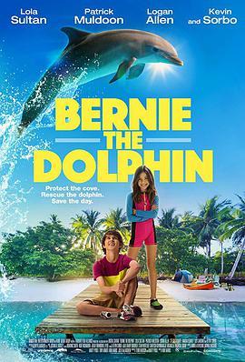 海豚伯尼的海报