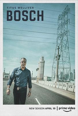 博斯 第五季的海报