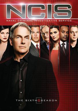 海军罪案调查处 第六季的海报