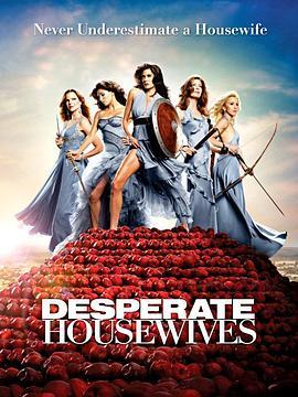 绝望主妇 第六季的海报