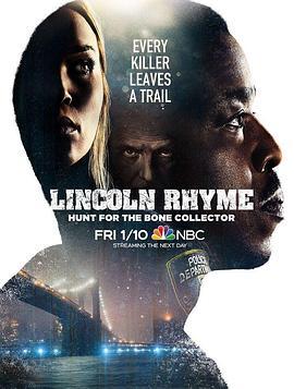 神探林肯:人骨拼图的海报