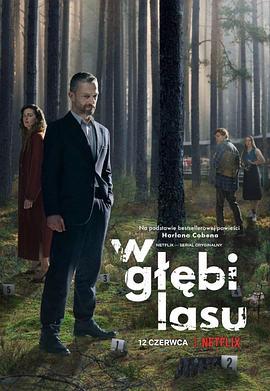 森林谜案的海报