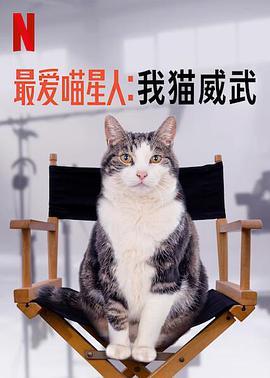 最爱喵星人:我猫威武的海报