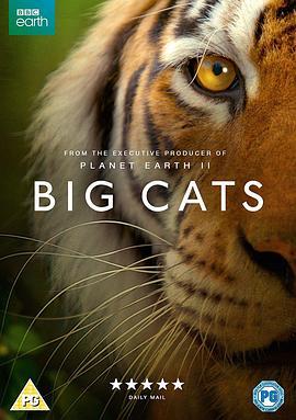 大猫的海报