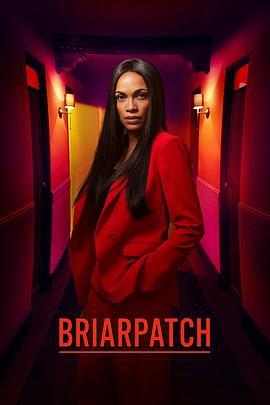 《荆棘丛 第一季》全集/Briarpatch Season 1在线观看
