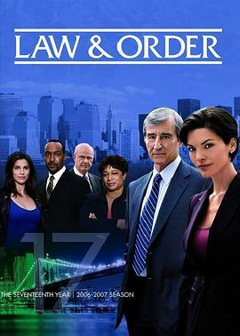 法律与秩序 第十七季的海报