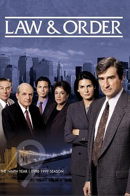 法律与秩序 第九季的海报