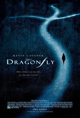 蜻蜓的海报