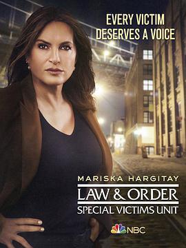 法律与秩序:特殊受害者 第二十二季的海报