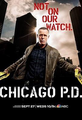芝加哥警署 第五季的海报