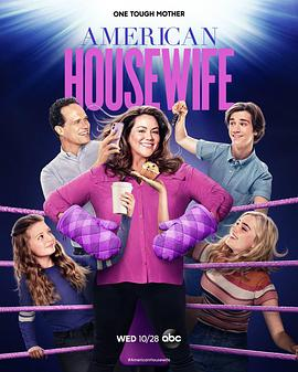 美式主妇 第五季的海报