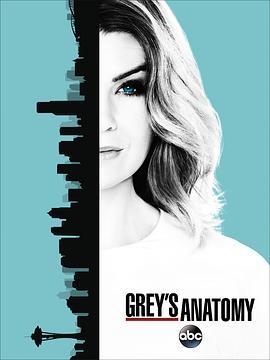 实习医生格蕾 第十三季的海报
