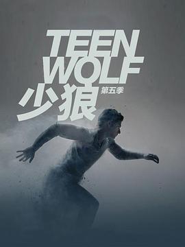少狼 第五季的海报
