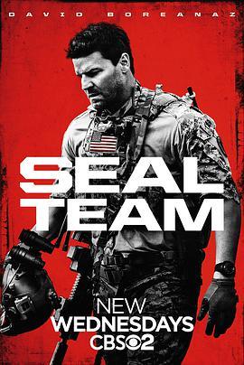 海豹突击队 第一季的海报