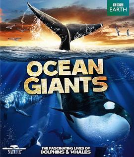 海洋巨兽的海报