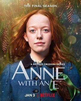 小小安妮 第三季的海报