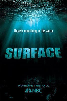 水下之秘的海报