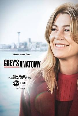 实习医生格蕾 第十五季的海报