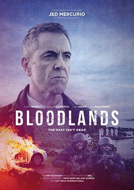血色土地的海报