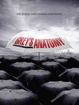 实习医生格蕾 第六季的海报