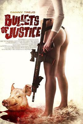 正义的子弹的海报