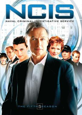 海军罪案调查处 第五季的海报