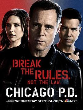 芝加哥警署 第二季的海报