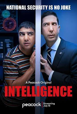 《不靠谱情报局 第一季》全集/Intelligence Season 1在线观看