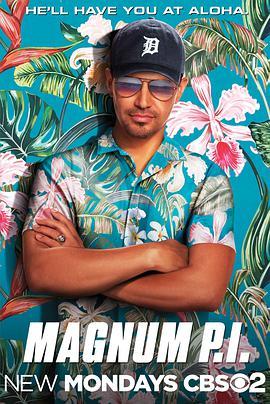 夏威夷神探的海报